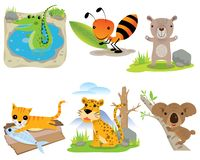 Grupo animal do vetor, crocodilo, formiga, urso, gato, leopardo, coala, ilustração do vetor
