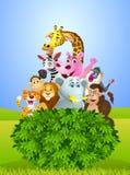Grupo animal dos desenhos animados Foto de Stock Royalty Free