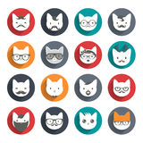 Grupo animal estilizado do avatar gatos Fotos de Stock