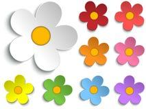 Grupo bonito da coleção das flores da mola de 9 ilustração do vetor