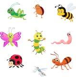 Grupo bonito da coleção do inseto ilustração royalty free