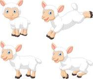 Grupo bonito da coleção dos carneiros dos desenhos animados, isolado no fundo branco Imagem de Stock