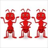 Grupo bonito da coleção dos desenhos animados das formigas ilustração stock