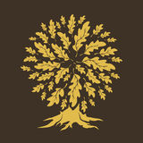 Grupo bonito da silhueta dos carvalhos Imagens de Stock Royalty Free