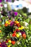 Grupo bonito de flores em botão Imagens de Stock Royalty Free