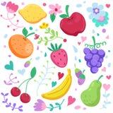 Grupo bonito de frutos Ilustração Stock
