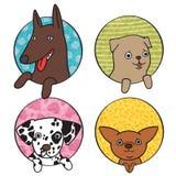 Grupo bonito do ícone dos cães Fotos de Stock