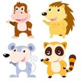 grupo bonito do animal Imagens de Stock
