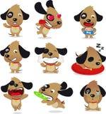 Grupo bonito do cachorrinho do cão Imagens de Stock Royalty Free