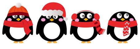 Grupo bonito do pinguim Imagens de Stock