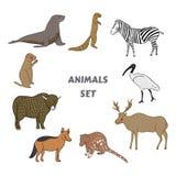 Grupo bonito do vetor dos animais dos desenhos animados Estilo desenhado à mão isolado da ilustração do vetor Etiqueta, cartão, c Fotos de Stock Royalty Free