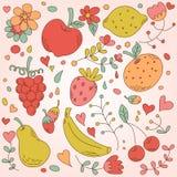 Grupo bonito do vintage de frutos Ilustração do Vetor