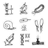 Grupo bonito tirado mão do esboço dos ícones do laboratório do vintage da ciência Vect ilustração stock