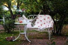 Grupo branco da porcelana para o chá ou o café na tabela no jardim sobre o fundo da natureza do verde do borrão Partido exterior  fotos de stock