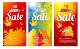 Grupo brilhante de Autumn Leaves Sale Banner Template Disconto do negócio Fotografia de Stock