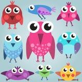 Grupo brilhante do pássaro dos desenhos animados, pássaros cômicos engraçados, simples Imagens de Stock Royalty Free