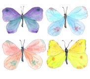 Grupo colorido das borboletas da aquarela ilustração do vetor