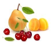 Grupo colorido de fruta. Foto de archivo