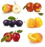 Grupo colorido de fruta. Fotos de archivo