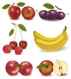 Grupo colorido de fruta. Imagenes de archivo