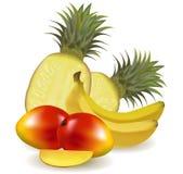 Grupo colorido de fruta fresca con las piñas. Fotografía de archivo