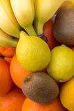 Grupo colorido de frutas frescas Fotos de archivo