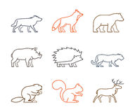 Grupo colorido do esboço de animais da floresta Imagem de Stock Royalty Free