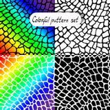 Grupo colorido do teste padrão da textura do vetor Fotos de Stock