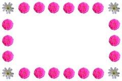 Grupo colorido floral do fundo do teste padrão Foto de Stock Royalty Free