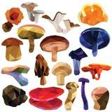 Grupo comestível do cogumelo imagem de stock royalty free