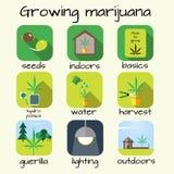 Grupo crescente do ícone da marijuana Foto de Stock Royalty Free