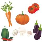 grupo 3D de vegetais do vetor. Coleção da ilustração dos tomates, pimentas, abóbora, cogumelos, cenoura Fotografia de Stock Royalty Free