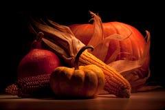 Grupo da abóbora e do milho Imagem de Stock Royalty Free
