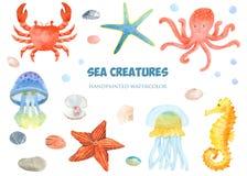 Grupo da aquarela de criaturas do mar ilustração do vetor