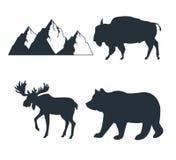 Grupo da aventura dos animais selvagens ilustração do vetor