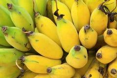 Grupo da banana madura Fotografia de Stock Royalty Free