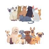 Grupo da beira dos gatos e dos cães, vista dianteira Pets a coleção de ilustrações dos desenhos animados ilustração do vetor