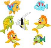 Grupo da coleção dos peixes dos desenhos animados isolado no fundo branco Imagem de Stock