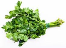 Grupo da erva fresca do aipo do verde do corte no branco Foto de Stock Royalty Free
