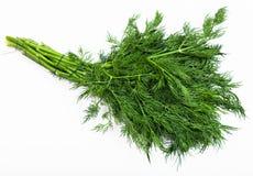 Grupo da erva verde fresca do aneto no branco Fotografia de Stock Royalty Free