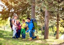 Grupo da família que caminha nas madeiras fotografia de stock
