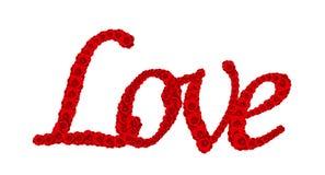 Grupo da flor da rosa do vermelho na palavra AMOR isolado no branco Imagem de Stock Royalty Free