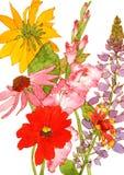 Grupo da flor do jardim imagem de stock royalty free