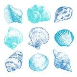 Grupo da garatuja dos shell do mar Fotos de Stock Royalty Free