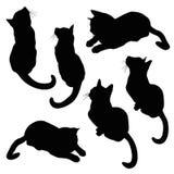 Grupo da ilustração da silhueta do gato Foto de Stock