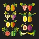 Grupo da ilustração de fruto ilustração do vetor