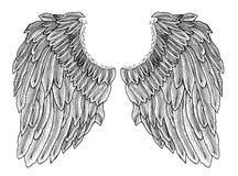 Grupo da ilustração do ícone das asas do vetor isolado no fundo branco ilustração stock