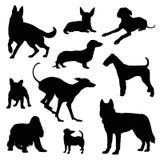 Grupo da ilustração do cão Fotos de Stock