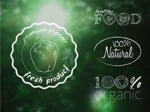 Grupo da ilustração do vetor de logotipos do alimento biológico em um contexto da floresta do borrão Fotografia de Stock Royalty Free