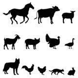 Grupo da ilustração do vetor do animal de exploração agrícola Imagens de Stock